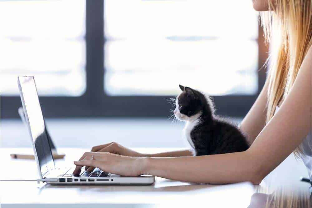 Best Online Communication Tools