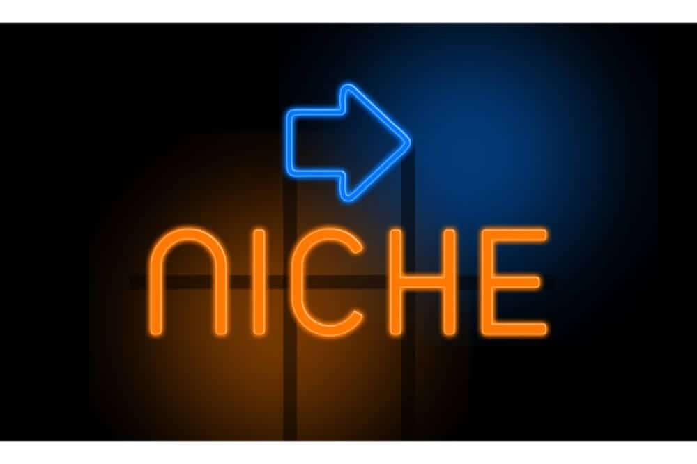 Right Blogging Niche